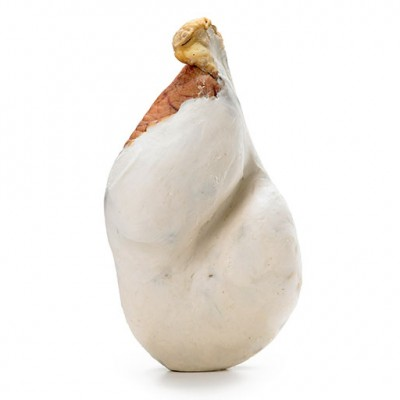 prosciutto-nudo-crudo